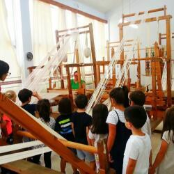 Paidiki Hara School Trips